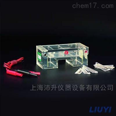 DYCP-31C北京六一DYCP-31C微琼脂糖电泳仪(桥)
