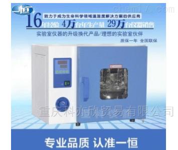 电热鼓风干燥箱 电热恒温箱 烘箱 工业烤箱