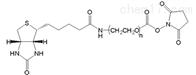 PEG衍生物Biotin-PEG-NHS 2K生物素聚乙二醇活性酯