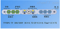 TVVBPG-TV钢芯和视频线电梯电缆厂家徐吉