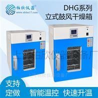 DHG-9245A立式300度电热恒温鼓风干燥箱、DHG-9245A