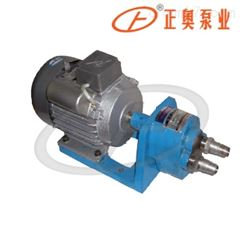 上海正奥S微型齿轮油泵 铸铁油泵抽液泵
