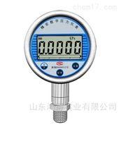 HD-ACD-201精密数字压力表HD-ACD-201
