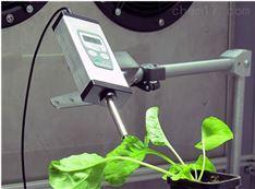 Monitoring Pen MP100在线式叶绿素荧光仪