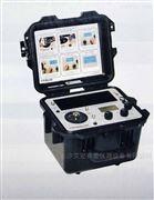 PCB  9100D 便携式振动校验仪