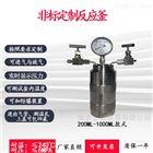 PFA加氢(CO2)真空反应釜