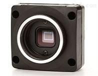 CMLN-13S2爱特蒙特CCD相机