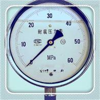 Y-150B-FZY-150B-FZ不锈钢压力表