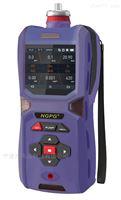 NGP60-EX便攜式可燃氣體檢測儀