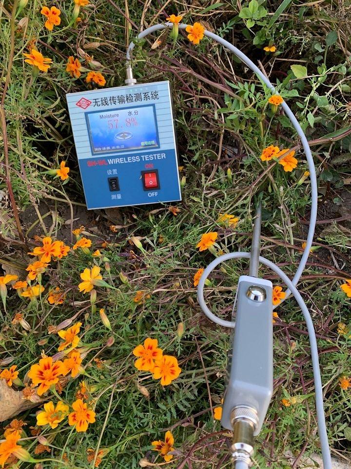 无线传输水分探测器wireless detector