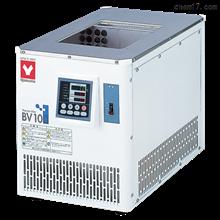 BV100低温恒温水槽