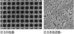 ANWP02500美国Millipore密理博尼龙膜和网格膜