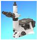 LB-602三目反转冶金显微镜