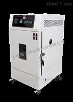 RLH-010換氣老化試驗箱