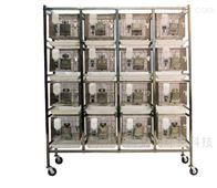 ZK-GXG系列实验鼠干养式饲养笼(培养箱)