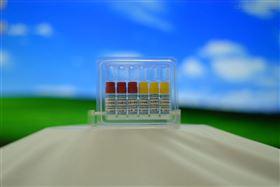 CYP/EZ044CYP2C9 3*突变株 + 还原酶 + B5