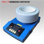 ZNCL-TS1000ml智能数显磁力加热套搅拌器