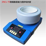 上海数显磁力搅拌电加热套