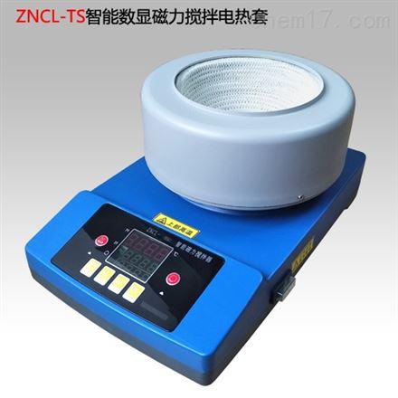 数显恒温磁力电热套搅拌器