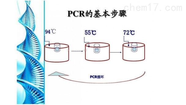 禽腺病毒PCR試劑盒