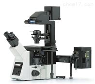 ix73奥林巴斯研究级倒置显微镜