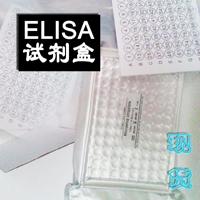 大鼠CXC趋化因子受体3CXCR3ELISA免费实验