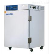 WJ-3二氧化碳培养箱