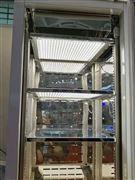 二氧化碳人工气候箱上海厂家直销