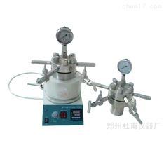 小型多功能高压反应釜可电动搅拌磁力搅拌