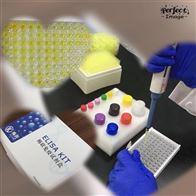 人丙酮酸激酶(PK)ELISA试剂盒促销