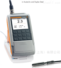 铁素体含量测定仪fmp30+FGAB1.3-Fe