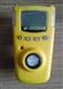 GAXT-A2-DL 氨气检测仪(高量程)