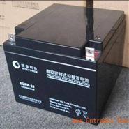 银泰蓄电池6GFM-38/12V38AH后备UPS电池