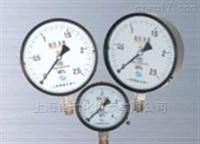 YA -100 氨压力表