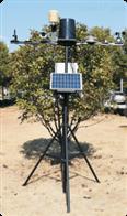 固定式无线农业气象综合检测仪SGQ-GPRS-Ⅲ
