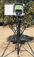 无线土壤墒情测定仪SGS- GPRS-Ⅲ