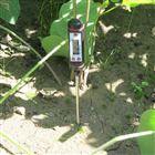 针式土壤温度计(温度速测仪)