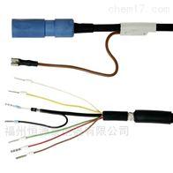 CPK12-HBA1AE+H电极电缆CPK9-NBA1A