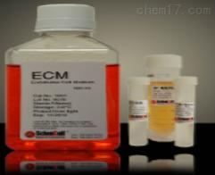 ScienCel内皮细胞培养基1001