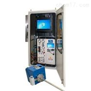 915JLUMEX连续在线烟气汞监测仪OLM915J