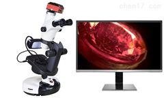 NGI-608T(4K)4K超清高端宝石显微镜
