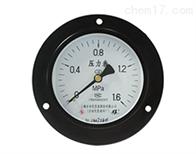 YTN-100ZT耐震压力表上仪四厂