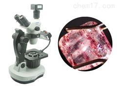 NGI-Z5C宝石(珠宝)显微镜