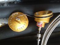 WRNK-336S上海自动化仪表三厂销售铠装热电偶