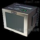 UV-400系列大面积照射高强度紫外灯