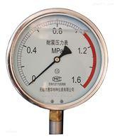 耐震压力表参数