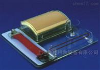 KAC/LV9外科多技能训练模型