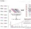 多肽合成与修饰技术服务
