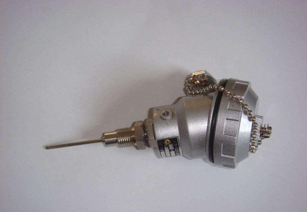 WZP2-741A 防爆铂电阻