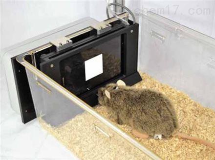 啮齿动物触屏行为认知测试系统